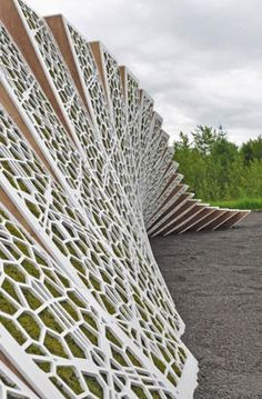 "structured moss wall called ""Surface Deep,"" a project by Harvard Graduate School of Design's landscape architecture department"