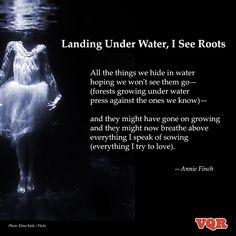 """""""Landing Under Water, I See Roots"""" by Annie Finch #poetry #poem #instapoem"""