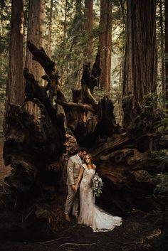 California Redwoods Elopement | Redwood wedding, Elopement ...