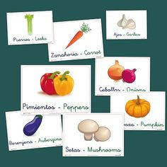 Vocabulario básico: Hortalizas y verduras