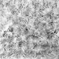 t117_A_texture_오연수_42