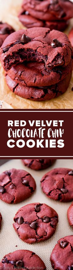 Soft and chewy red velvet cake chocolate chip cookies! Easy chocolate cookies recipe http://sallysbakingaddiction.com/2013/12/13/red-velvet-chocolate-chip-cookies/