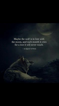 Quotes 'nd Notes — Maybe the wolf is in love with the moon, and each. Wolf Qoutes, Lone Wolf Quotes, Moon Quotes, True Quotes, Words Quotes, Sayings, Meaningful Quotes, Inspirational Quotes, Wolf Life