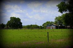 Taken while riding along a back road in rural central Florida #countrylife #ruralphotography #laurieperry