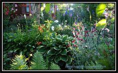 zapach ogrodu: Ogród