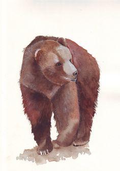 Watercolor bear art by Splodgepodge
