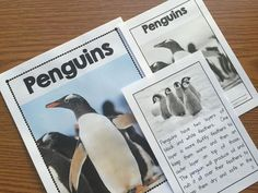 Penguin Nonfiction Book for Kindergarten and first grade. This book is filled with facts and real photos about penguins. Also includes lots of matching writing activities.