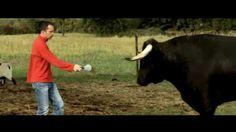 """""""I am anti bullfighting"""" on Festival Nikon 2015 in English"""