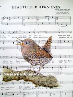 Image of Singing Wren