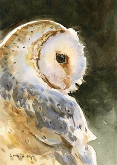Barn Owl Notecards, Pack of 8 Cards