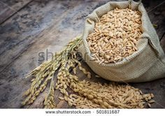 paddy rice in a bag with rice pile and the ear of paddy rice form the field of farmland on the wooden table background. #rice #bag #sack #paddy #wooden #background