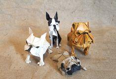 Chinese New Year 2018 Origami Dog Extravaganza! #origami #papercraft #papercrafts #paper #craft #crafts #diy #fold #folding #chinesenewyear #2018 #lunarnewyear #yearofthedog