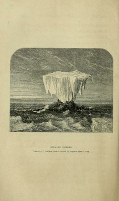 The Voyage of the 'Fox' in the Arctic Seas : - Biodiversity Heritage Library