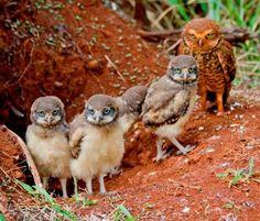 Family ;)