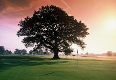 Society details for Sandford Springs Golf Club | Golf Society Course in England | UK and Ireland Golf Societies