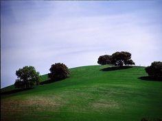 Las Piletas (Ronda) - voorjaarslandschap tussen Ronda en Montecorto