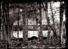 Abandon trailer....Borut Peterlin Wet Plate Collodion, Alternative Photography, Abandoned, Fine Art, Plants, Blog, Left Out, Blogging, Plant