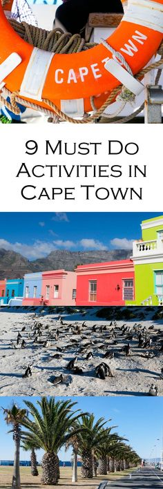 9 Must do Activities in Cape Town, South Africa. Hit the touristy spots in and outside of town! #travel #travelblog #travelblogger #southafrica #capetown #travelguide