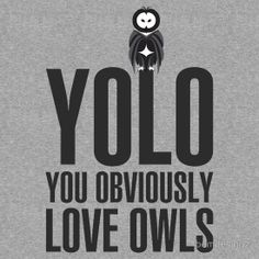 Haha, thanks for sharing this with me @ckarrels !!! YOLO - YOU OBVIOUSLY LOVE OWLS.