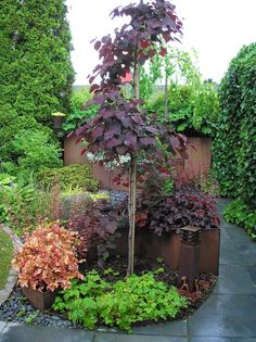While once restricted to the porch or patio, planters have extended their reach. The popularity of container landscaping is growing as people realize the flexibility this attractive design can provide. Landscape Design, Garden Design, Plants For Raised Beds, Garden Of Earthly Delights, Greenhouse Plans, Back Gardens, Garden Gates, Sisal, Garden Planning