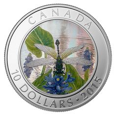 Canada 10 Dollars Silver Coloured Hologram Coin 2015 The Pygmy Snaketail Mint Coins, Silver Coins, Canadian Things, Coin Art, Gold Money, Dragonfly Art, Canadian History, Coins For Sale, Silver Bullion