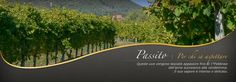 --ITALIA-FOOD-PIEMONTE: i vini di Caluso:Passito e Erbaluce  by Francesco  -Welcome and enjoy-  #WonderfulExpo2015  #Wonderfooditaly #MadeinItaly #slowfood  #Basilicata #Toscana #Lombardia #Marche  #Calabria #Veneto  #Sicilia #Liguria #ValledAosta #Pollino #airbnb #LiveThere #FrancescoBruno    @frbrun   frbrun@tiscali.it
