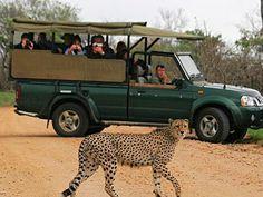 En-Suite Chalet in Kruger Park Safari Kruger National Park Safari, National Parks, Africa Map, Africa Travel, Marloth Park, Safari Game, Visit South Africa, Wildlife Safari, Game Reserve