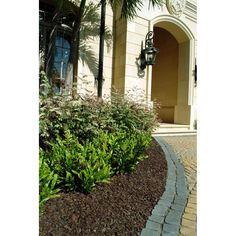 7 best rubber mulch images gardens garten rubber mulch rh pinterest com