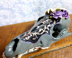 Hand painted whimsical coyote skull with flower details