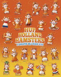 AH oranje hamsters.