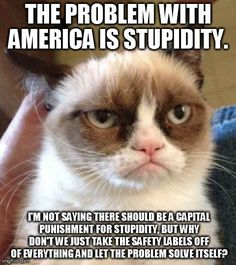 .The problem with America is stupidity. I'm not saying there should be a capital punishment for stupidity, but why don't we just take the safety labels off of everything and let the problem solve itself?