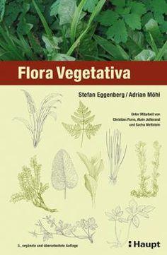Eggenberg, Stefan / Möhl, Adrian «Flora Vegetativa. Ein Bestimmungsbuch für Pflanzen der Schweiz im blütenlosen Zustand» | 978-3-258-07798-7 | www.haupt.ch