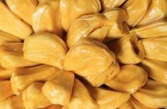 Jackfruit Carnitas- vegan, cheap, and quick!