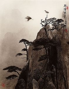 PHOTOGRAPH (made to look like a print) by Don Hong-Oai