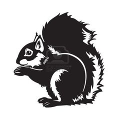 Squirrel http://us.123rf.com/400wm/400/400/insima/insima1209/insima120900073/15307772-sitting-eurasian-squirrel-forest-animal-black-and-white-vector-picture-isolated-on-white-background-.jpg