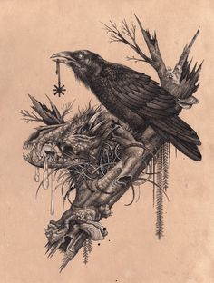 CORVINE  [adjective]  of, resembling, or characteristic of crows.