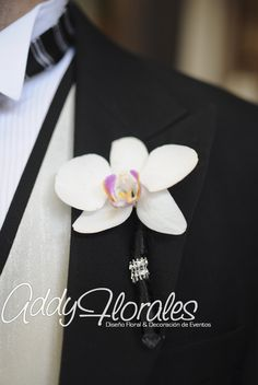 Orchid white boutonier  www.addyflorales.com
