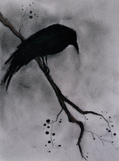 Original Raven Drawing Charcoal Drawing Gothic by AbstractArtM