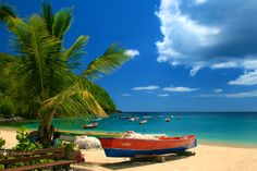 plage Anse Dufour Martinique