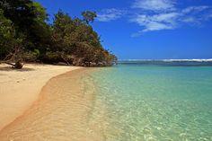 The beaches of Panama are incredible!  #tropical #panama