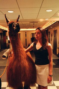 "Aubrey Plaza  I can just hear her saying ""This is my Llama...Dolly"" lol"