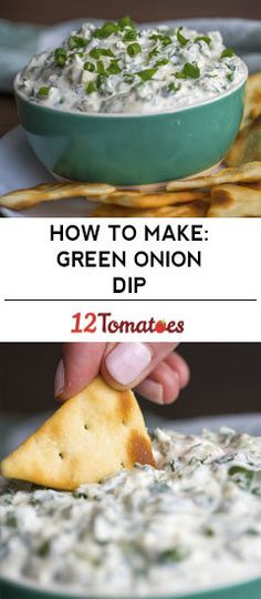 Creamy Green Onion Dip