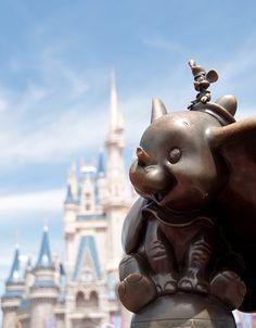 Dumbo dreaming at Disney World