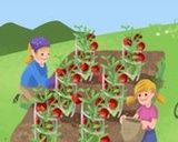 When to plant your garden.