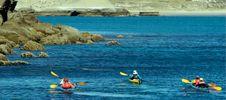 Expediciones - Patagonia Explorers: Sea Kayak, Trekking, Aventuras en Península Valdés