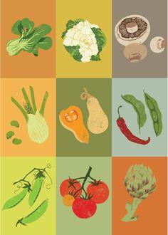 Lovely Vegetable illustrations