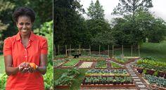 Michelle Obama's kitchen garden