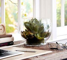 Faux Succulent Arrangement #potterybarn