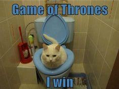 Funny-Game-of-Thrones-03.jpg 630×471 pixels