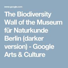 The Biodiversity Wall of the Museum für Naturkunde Berlin (darker version) - Google Arts&Culture